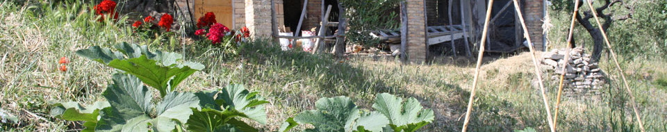 La Casa per le Arti - agricoltura creativa