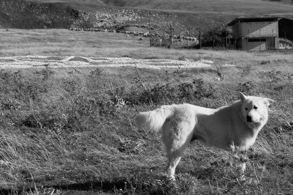 9 Elogio della Land Art terra scritture magiche Rudolf Steiner pietra majella land art anima