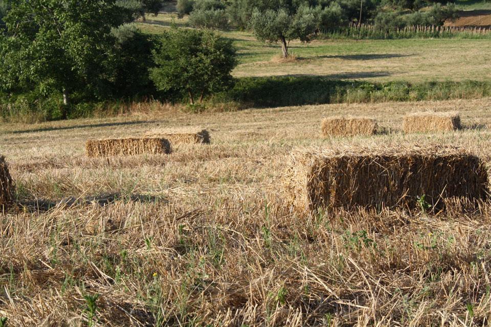 12 La Porta di Giano walter zuccarini land art la porta di giano giano furlo