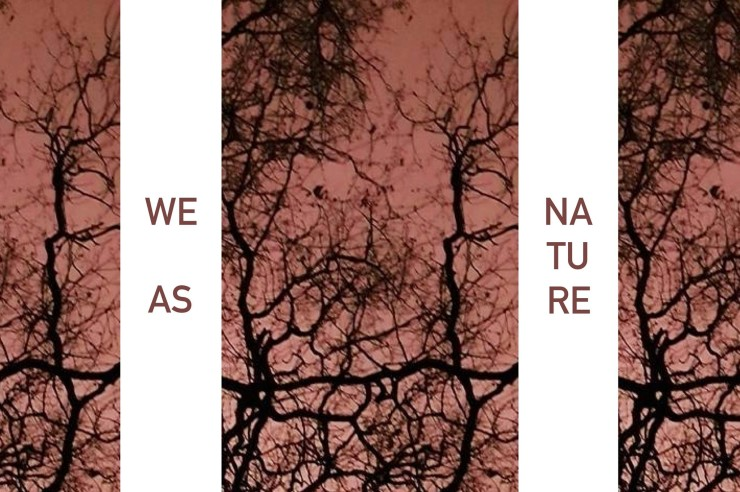 We As Nature-roma-interno14-zuccarini-dinunzio
