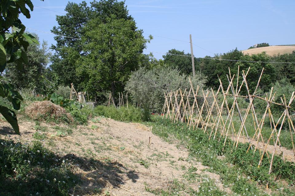 9 Agricoltura