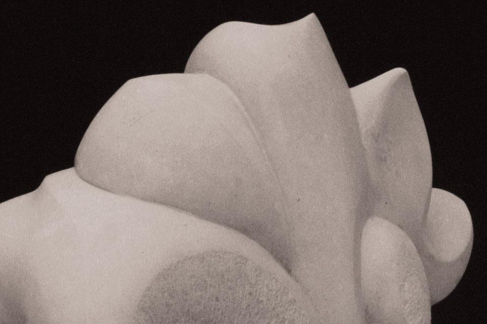 101 La scultura di Walter Zuccarini