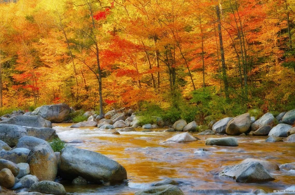 equinozio d'autunno - la casa per le arti - walter zuccarini