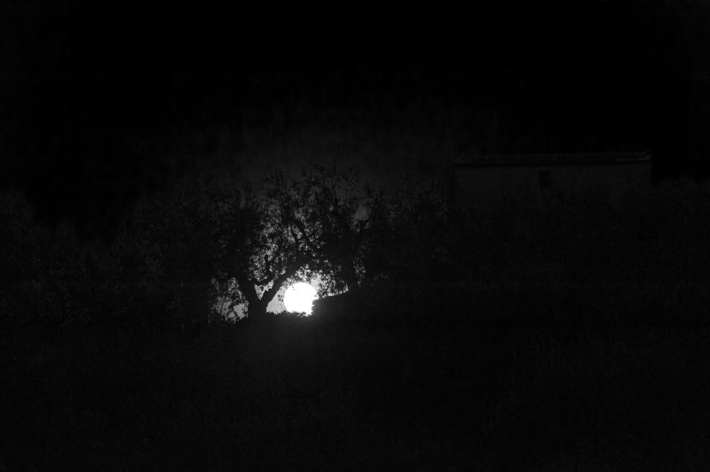 il canto del fuoco land art la casa per le arti walter zuccarini