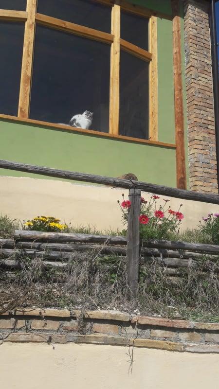 casa-per-arti-chieti-abruzzo-residenza-artistica-artigianato-scultura-arti-decorative